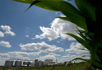 Ontario's Ethanol Lie